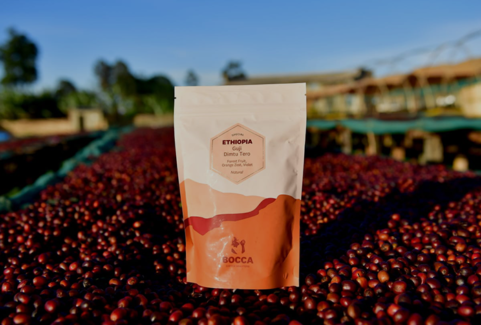 Bocca – Welcoming this unique specialty coffee roaster to the B Corp community